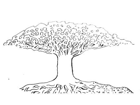Deze boom is ontsproten uit mijn verbeelding maar blijkt echt te bestaan.  Dit is de boom die ik voor me zie, wat ik heb later groeien door mijn aanwezigheid.