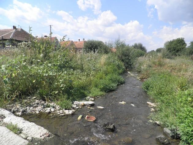 Dorp in Transylvanië
