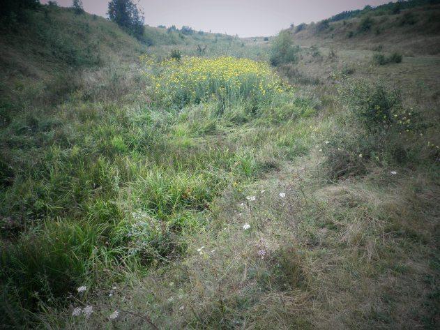 Heuvels onder de Karpaten (N)