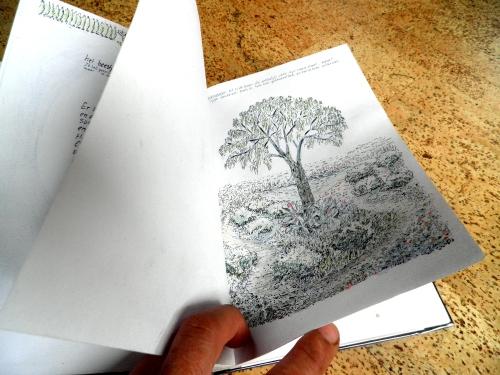 Kersenboom tekening