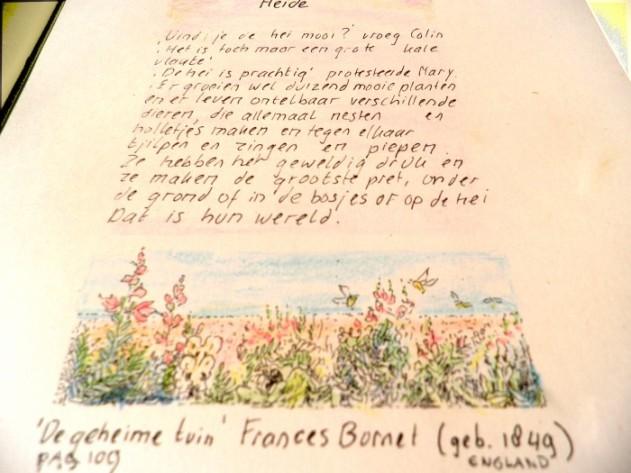 Heidetekening in Alowiekes plantenboekje