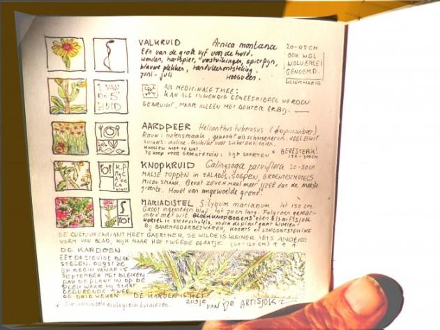 Onbetaalbaar plantenboekje van Alowieke