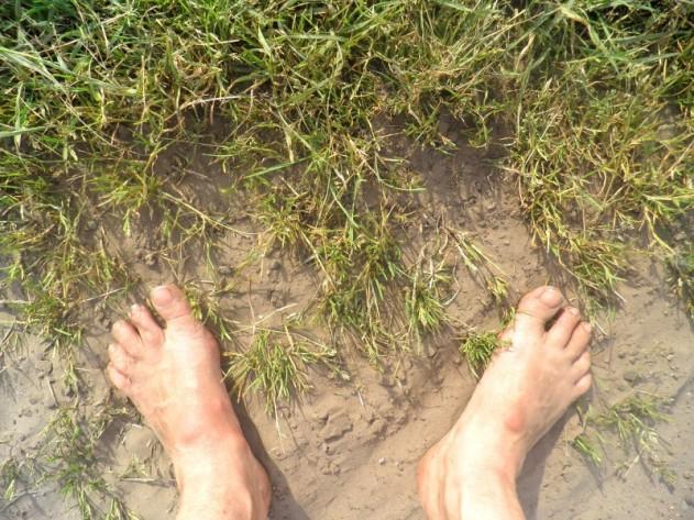 Wat zie ik? Voeten in het gras