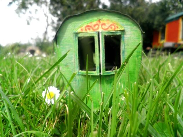 Wiekie's Kolibri in het gras