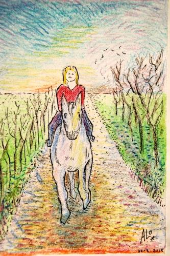 blogtek paardenvrouw