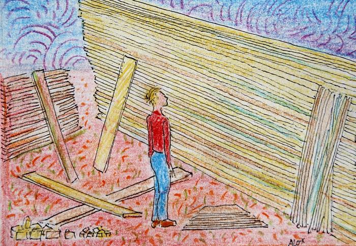 Blogtek plankenkoorts