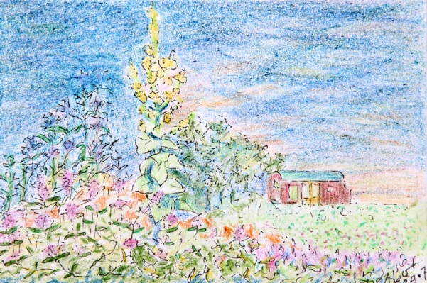 blogtek bloemenweelde R2 002