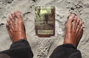steppenwolf-voetnoot-luit