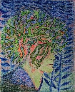 02-04-19 Alle kruinen geworteld en geplant
